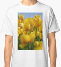 Yellow Field of Tulips Classic T-Shirt