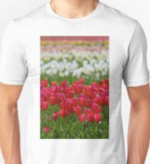Field of Tulips T-Shirt