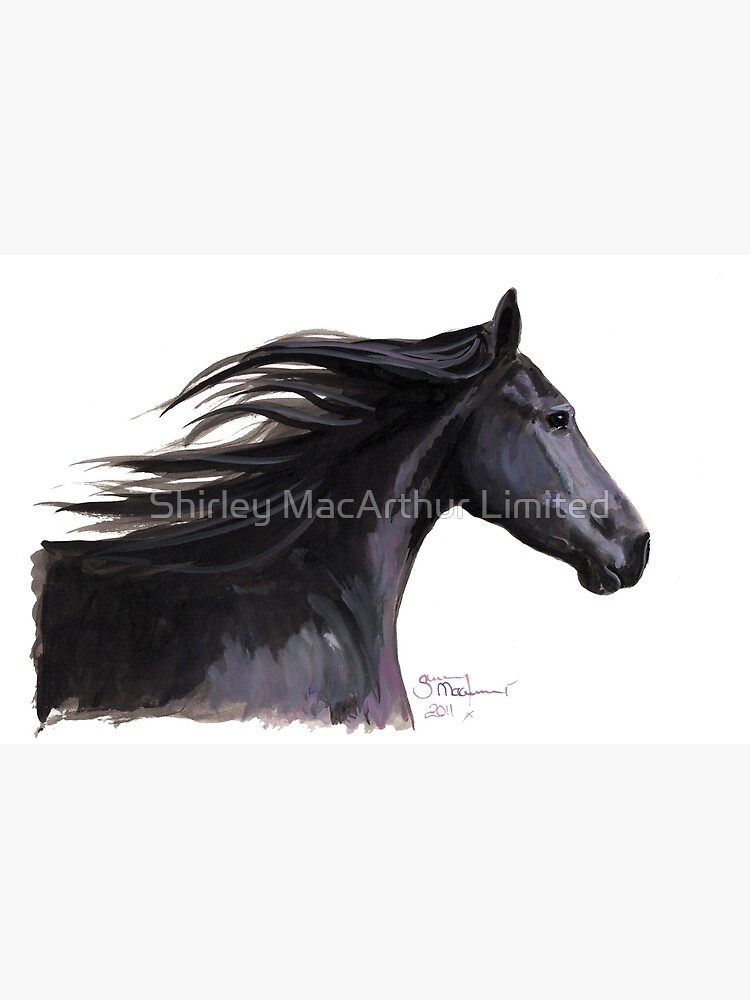 Black Friesian Horse ' BREEZE ' by Shirley MacArthur by ShirleyMacA