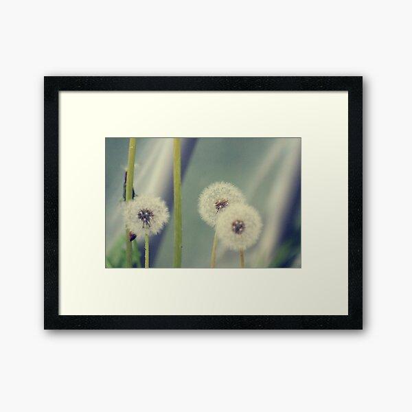 Tre amici Framed Art Print