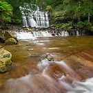 Liffey Falls by Paul Fleming