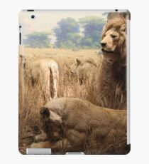 lions and lions and lions... oh my! iPad Case/Skin