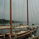 Morning Seneca Lake by John Schneider