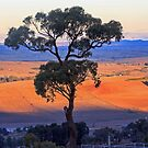 View from Mt Panorama by Doug Cliff