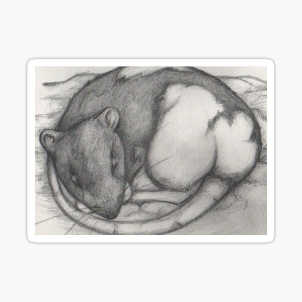 Fancy Rat Sticker