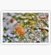 Bottle Brush Flower (2) Sticker
