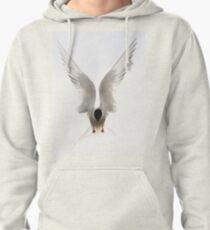 Tern Pullover Hoodie