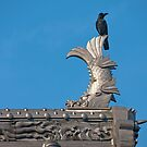Crow on fish by eXistenZ