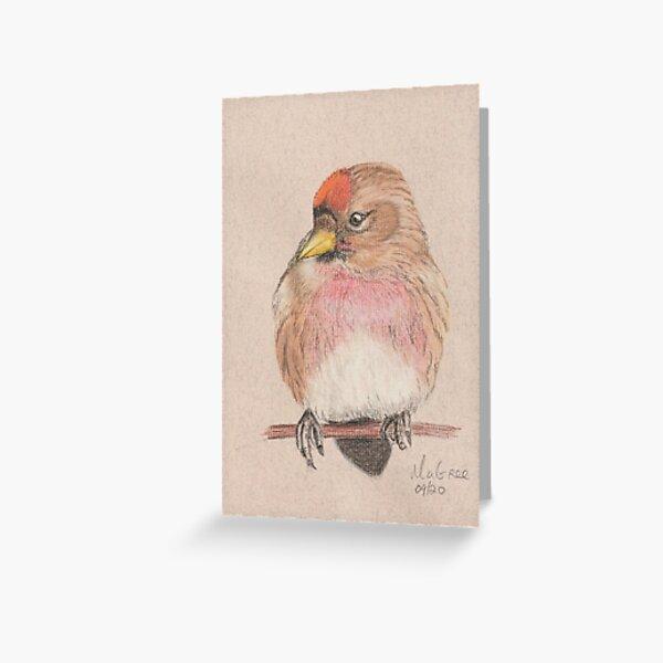 Redpoll/Sizerin Flammé Greeting Card