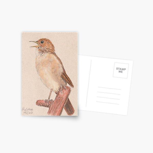 Nightingale/Rossignol Postcard