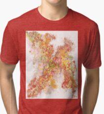 Phase transition Tri-blend T-Shirt