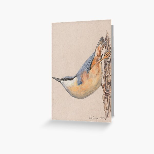Nuthatch/Sittelle Greeting Card