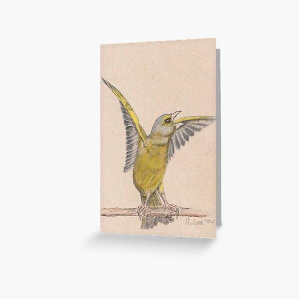 Greenfinch/Verdier Greeting Card
