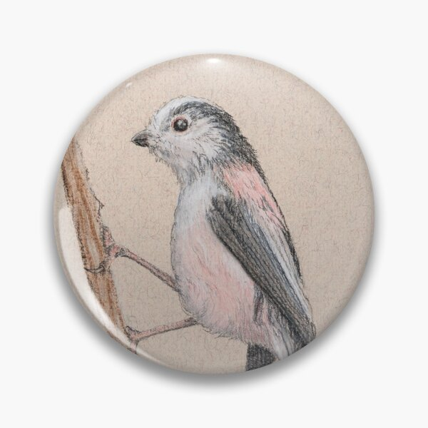 Long-tailed Tit/Mésange à Longue Queue Pin
