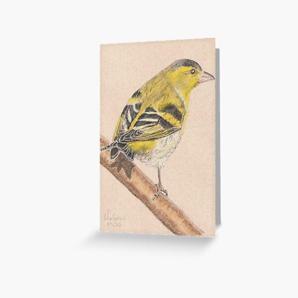 Siskin/Tarin des Aulnes Greeting Card