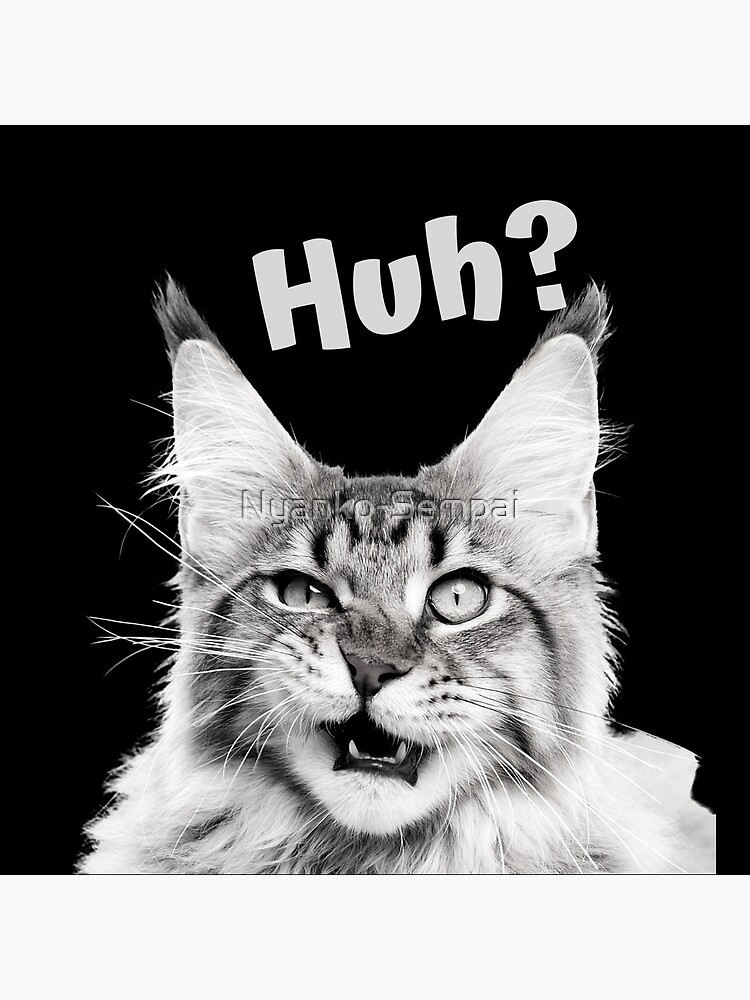 """""""Huh?"""" Funny confused cat by Nyanko-Sempai"""