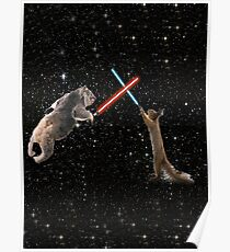 Star Wars the Koala strikes back Poster