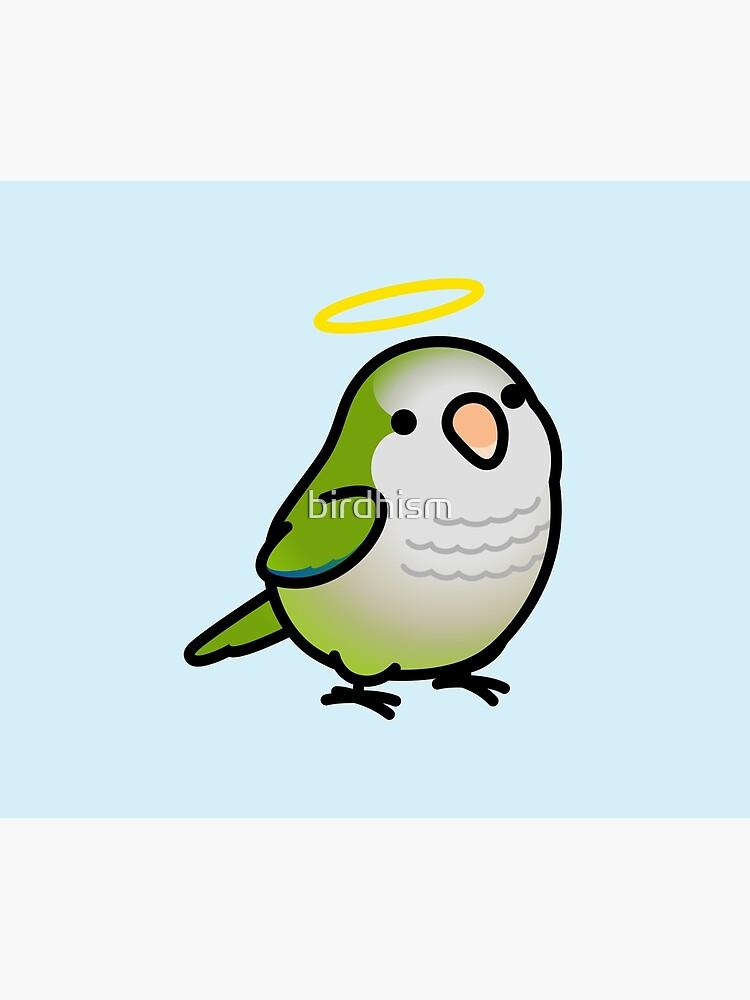 Custom Chubby Quaker Parrot - Chely by birdhism