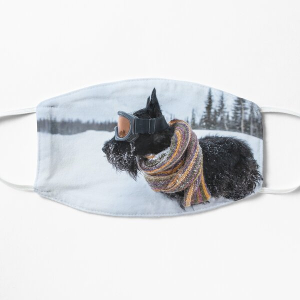 Scottish terrier wearing scarf and ski mask in a winter snow Flat Mask