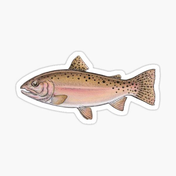 Cutthroat Trout.  Sticker