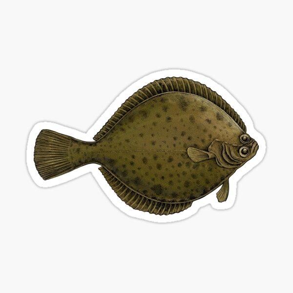 Flatfish Sticker
