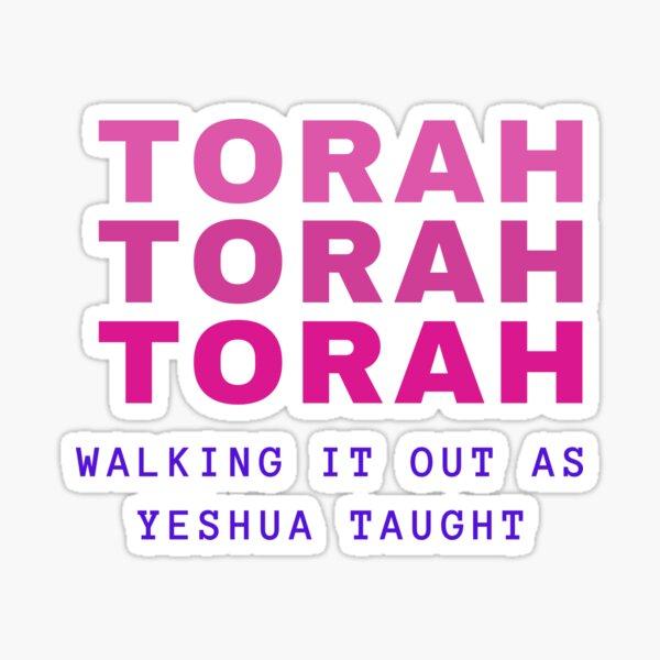 Pink Torah Sticker
