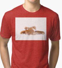 Fox Fight - Algonquin Park Tri-blend T-Shirt
