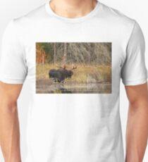 Smiling Moose, Algonquin park T-Shirt