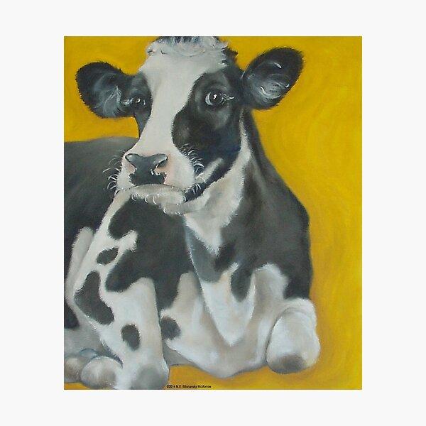 Cow Portrait Photographic Print