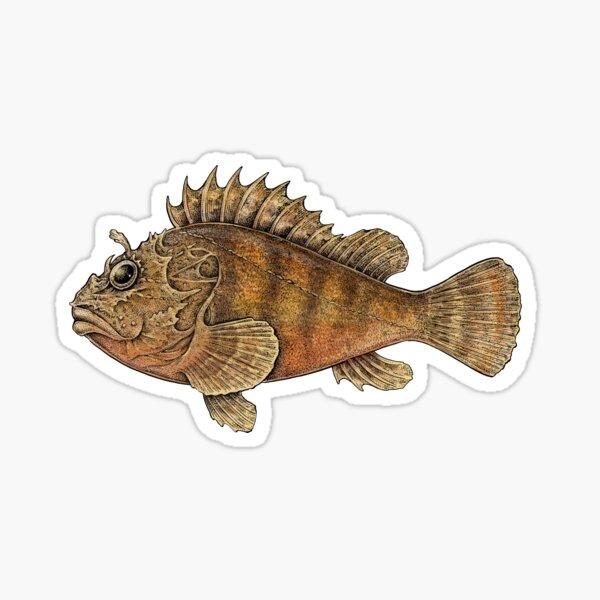 Scorpionfish Sticker