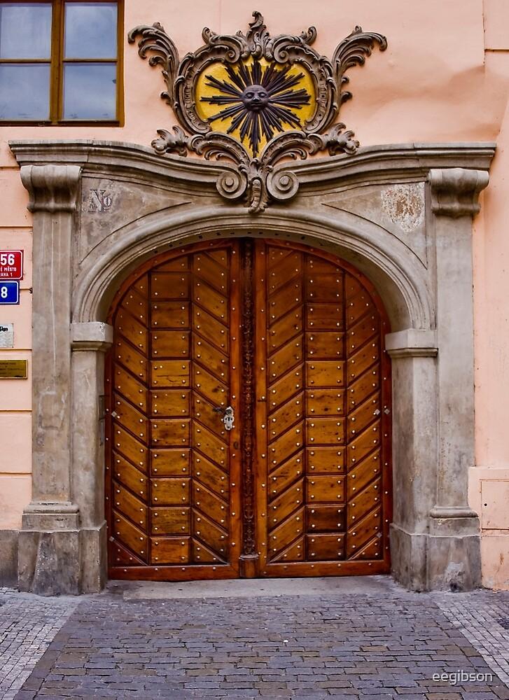 Door #1 by eegibson