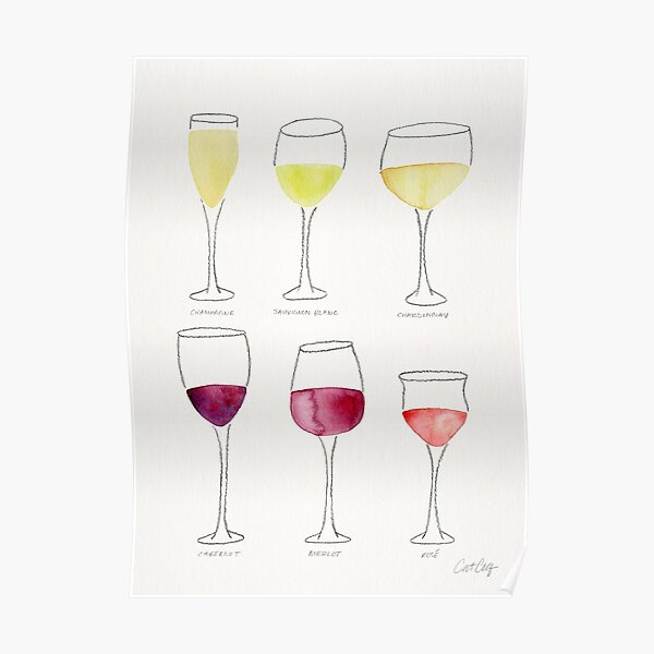 Collection de vin Poster