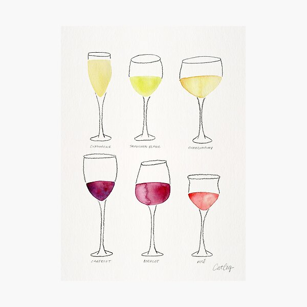 Wine Collection Photographic Print