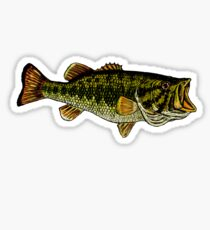 Bass Fisch Sticker
