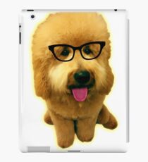 Precious Goldendoodle puppy! iPad Case/Skin