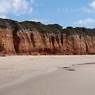Weathered Cliffs! at Point Roadknight, Grt. Ocean Rd. Victoria. by Rita Blom