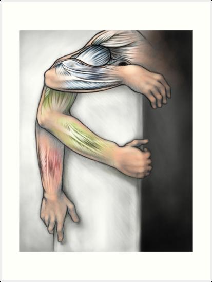 Arm-Muskel-Anatomie in Bewegung\