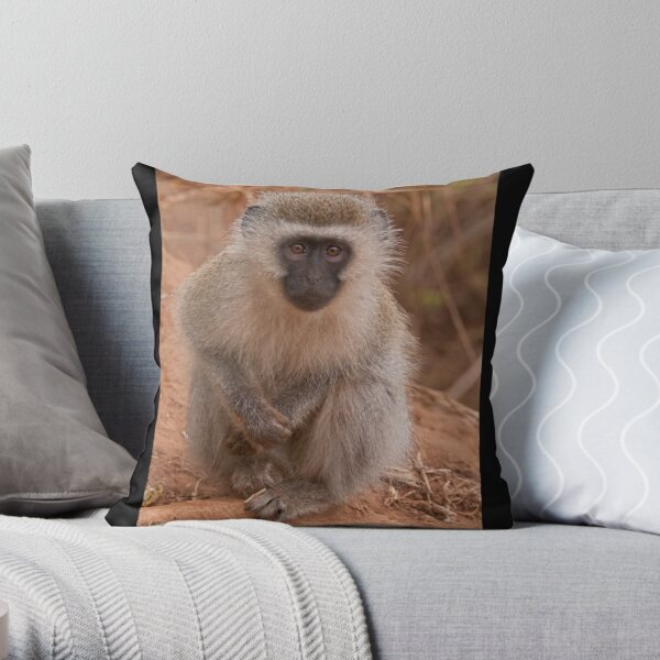 Vervet Monkey at Pafuri, Kruger National Park, South Africa Throw Pillow