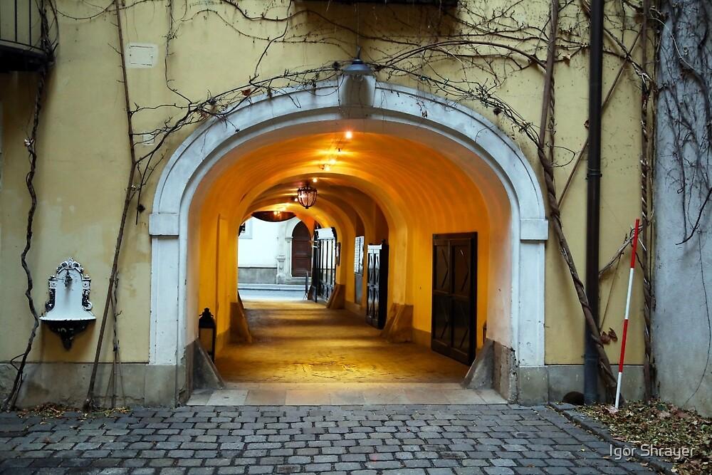 Vienna Passageway by Igor Shrayer