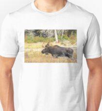 Big Bull Moose, Algonquin Park Unisex T-Shirt