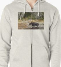 Bull moose - Algonquin Park Zipped Hoodie