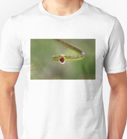 Green parrot snake, Costa Rica T-Shirt