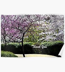 Spring Trees Blooming Thank You Poster
