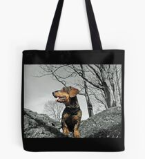 Out for Groundhogs....... Tote Bag