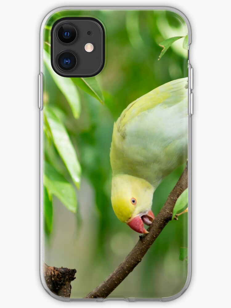 Indian Ringneck Parrot Iphone Case Cover By Irbic Redbubble
