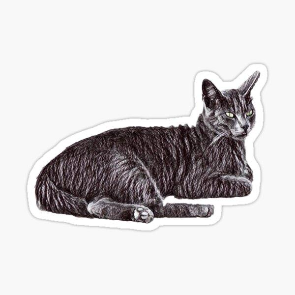 Chillin cat Sticker