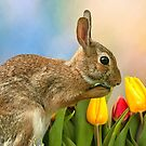 Happy Easter to all my Red Bubble Friends by Bonnie T.  Barry