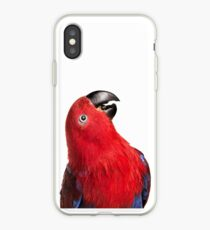 Eclectus iPhone Case