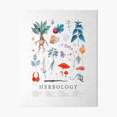 Herbology Harry Plants Art Board Print