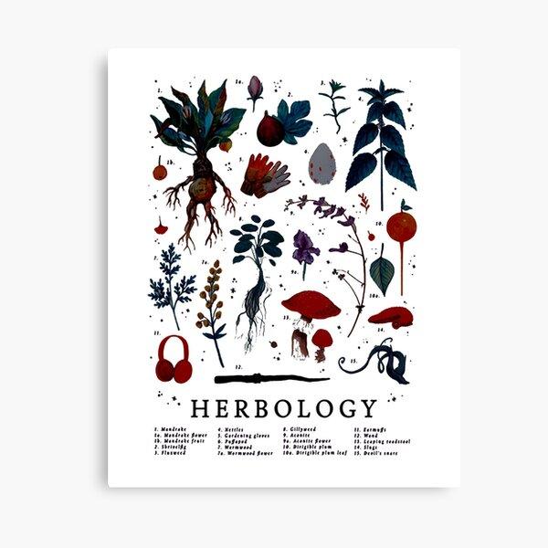 Herbology Harry Plant Canvas Print